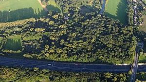 A27 door landgoed Nieuw-Amelisweerd, door Cor van Angelen